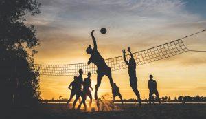 teamtrainingen, teamcoaching en teamontwikkeling